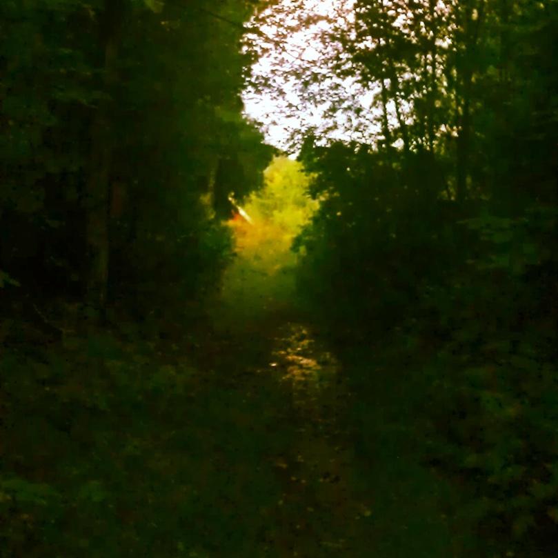 Lys i enden av tunellen